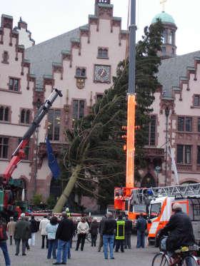 Höchster Weihnachtsbaum Deutschlands.Linz 2009 Kulturhauptstadt Europas Woher Kommt Der Höchste